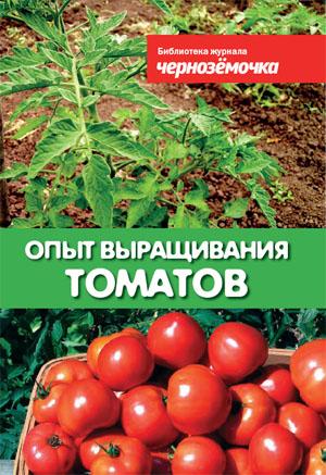 pomidor.jpg